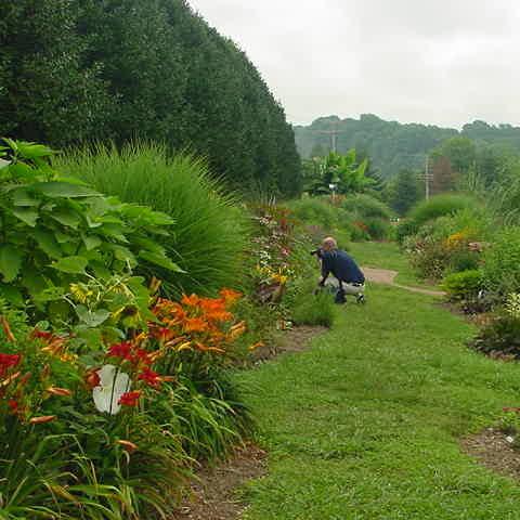 UT Plateau Gardens